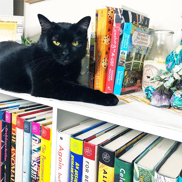 17 cleo cozy mystery library